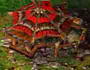 Castle Fight (Warcraft 3) гайд по расам. Разбор ключевых моментов. Большой мануал